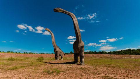 Los saurópodos se caracterizaban por tener cuellos de gran longitud. Foto (cc):  DariuszSankowski / Pixabay