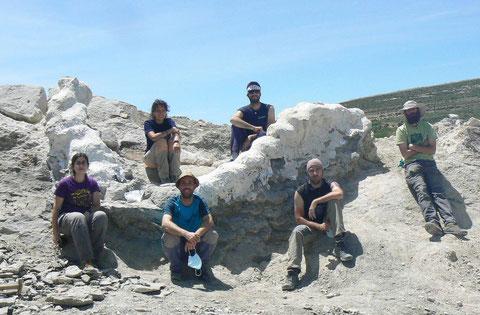 El equipo tras la excavación de la serie vertebral articulada, una vez protegida con yeso. / Foto:  Diego Castanera / ICP