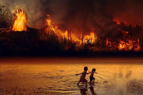 Incendios en Amazonas. Foto (cc): Pikist.com