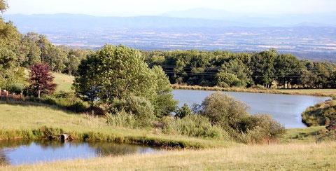 Lacs collinaires à Saissac (Montagne Noire/Aude)