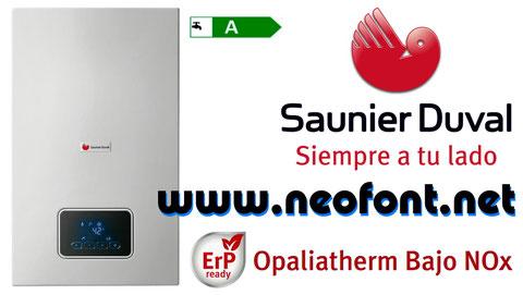 Calentador Saunier Duval Opalia F 11/2