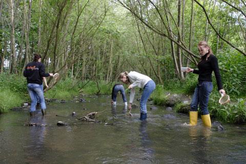 Bei der Untersuchung eines Fließgewässers sind Gummistiefel notwendig