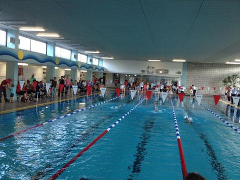 Der optimale Ort für die Sichtung: Im Aquawede tummelten sich etwa 200 Aktive, Trainer, Eltern und Kampfrichter