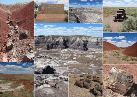 Painted Desert mit Petrified Forest