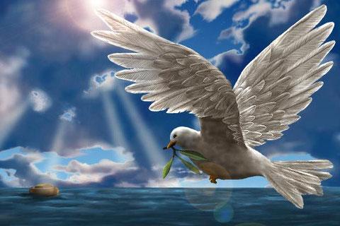 Allégorie colombe paix