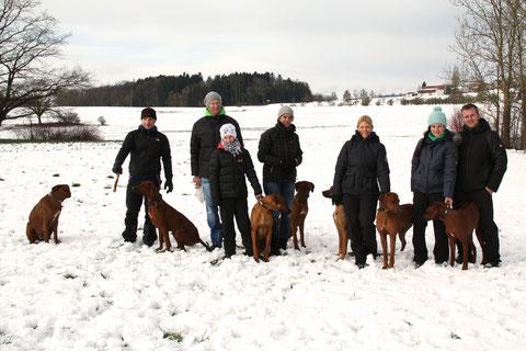 Hannes mit Rayha und Marula, Urs und Deny mit Dayo, Tanja mit Bomani, Nicole mit Danuwa und Zina und Rebecca und Michi mit Anaya