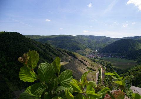 Das Ahtal - Blick von der Saffenburg auf Rech