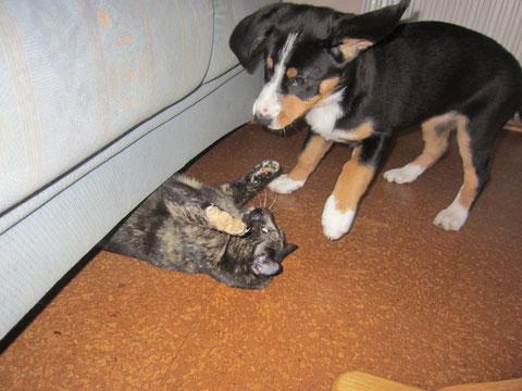26.05.2012 Anca und ihre Freundin Amy