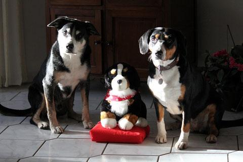 Bruno und Adele (mit 'Jacob') haben gemailt - ein süßes Bild!
