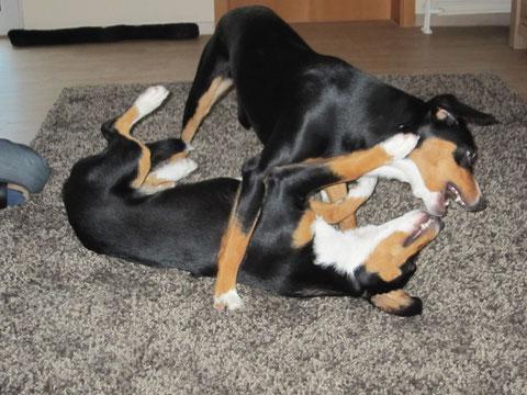 Die beiden Schwestern haben herrlich zusammen gespielt.