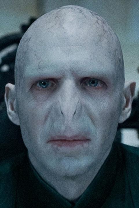 Wir freuen uns auf Harry Potter 8: Auf der Suche nach Voldemorts Nase