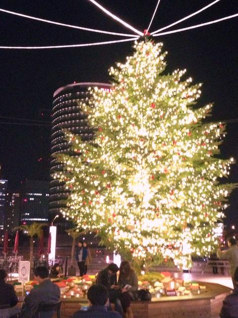 横浜ベイクオーターのクリスマスツリー
