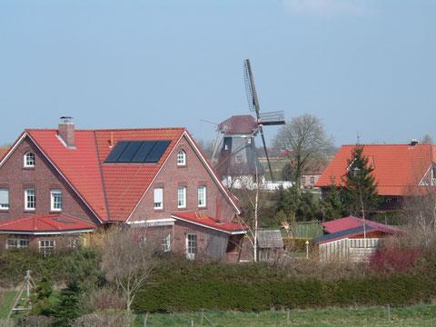 Beliebter Tagesausflug vom Ferienhaus Nordseeufer 1729 in Carolinensiel - Werdum in Ostfriesland