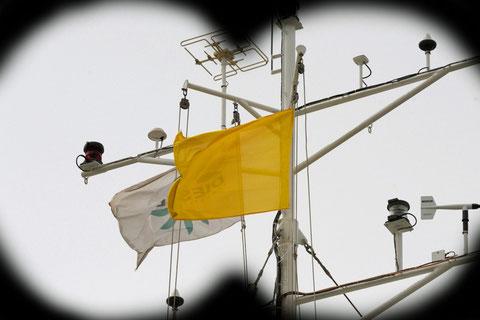 Navire sur rade en attente d'une autorisation d'entrer dans le port (Photo D.Sherwin-White)