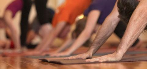 Yoga Einsteiger Unterricht