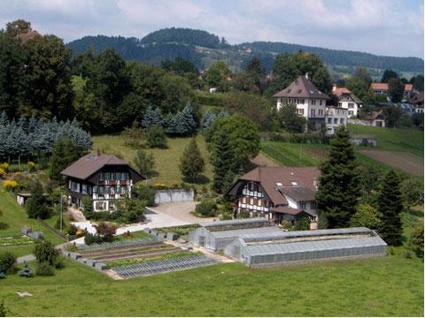 Weiermatt in Kirchdorf