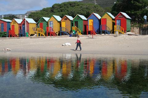 2009 Afrique du sud