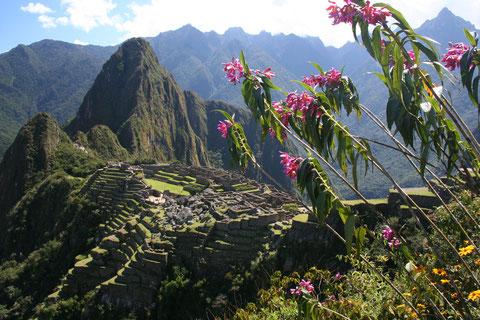 2007 Pérou