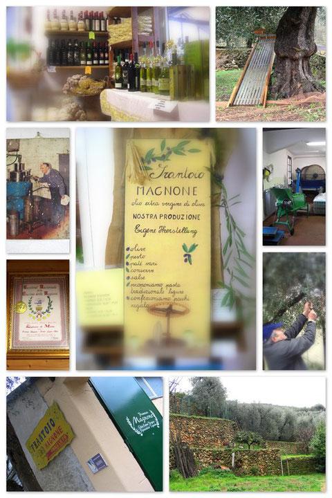 Die Ölmühle aus der wir unser Olivenöl beziehen!