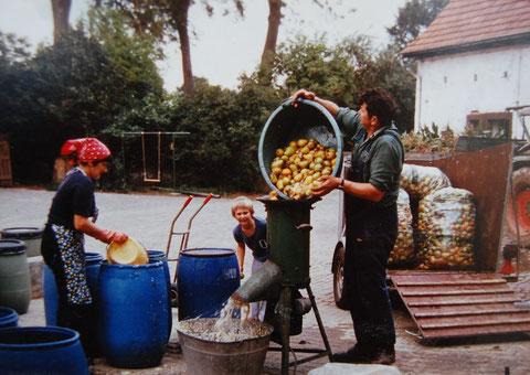 Anita und Rudolf Hemmer bei der Zerkleinerung des Obstes.