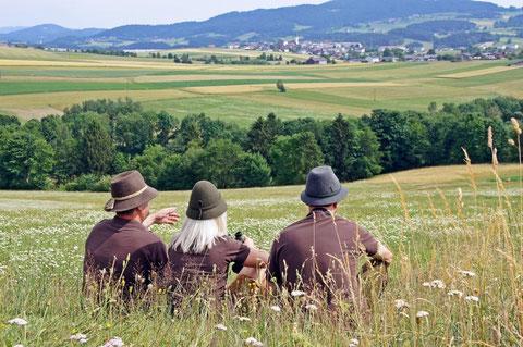 Sektionsleiter DI Florian Maringer mit seiner Stellvertreterin Lisa Mühlberger sowie Stellvertreter Kurt Gierlinger