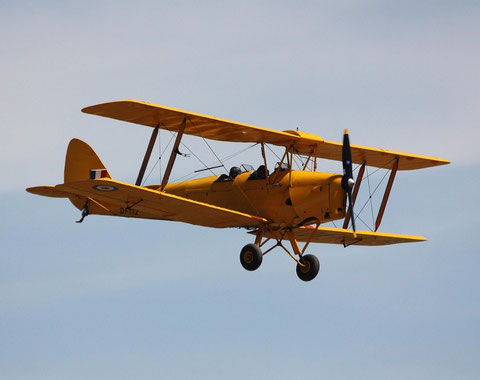 Tiger Moth DF112-1