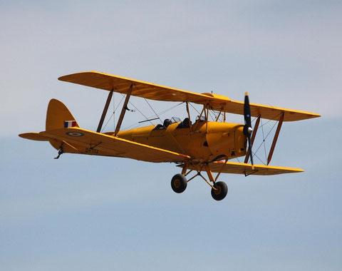 Tiger Moth DF112-1