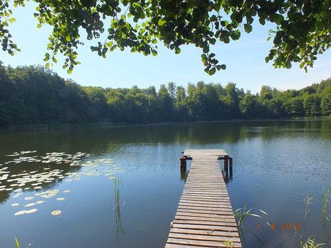 Verbandsgewässer Stribbowsee bei Hohenzieritz