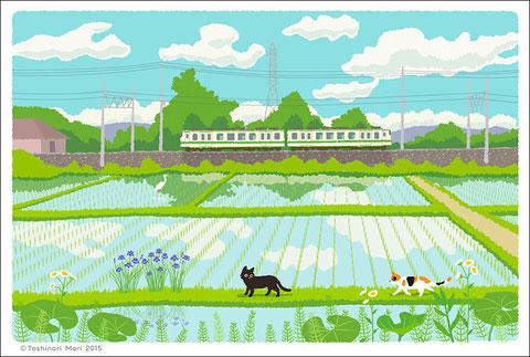 たびねこカレンダーイラスト5月-緑色の風