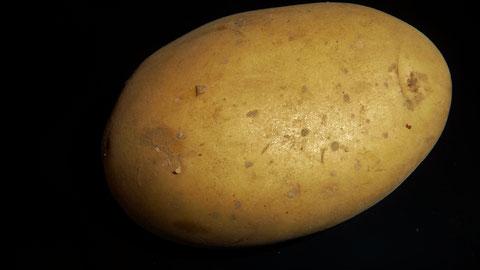 Jelly Kartoffeln Berlin Lieferservice