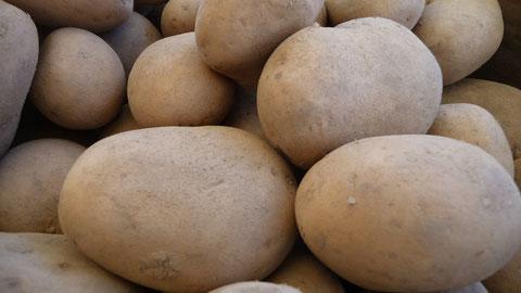 Afra Kartoffeln Berlin Lieferservice
