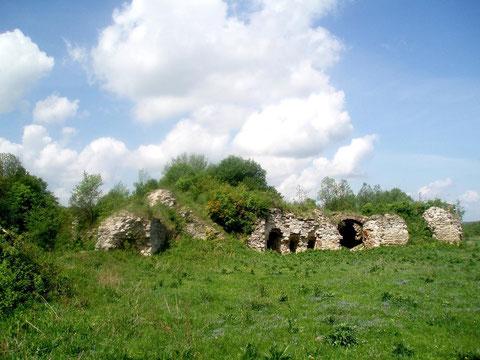 Північна стіна і залишки вежі
