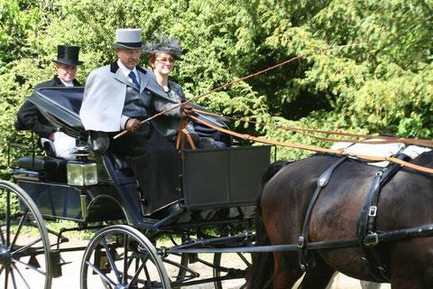 Christian Mettler alla guida della sua vettura di fine Ottocento trainata da due Trakehner.