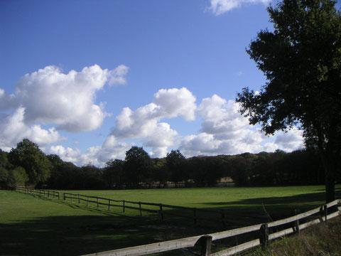 Im Oktober Blick über Felder
