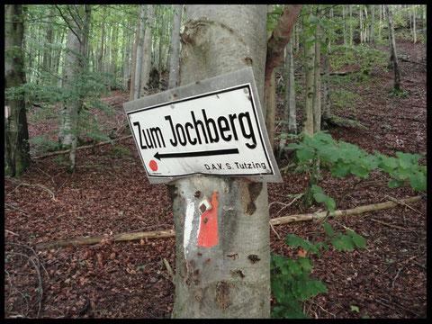 Hier geht's lang. Der Weg hinauf zum Jochberg-Gipfel ist perfekt ausgeschildert.