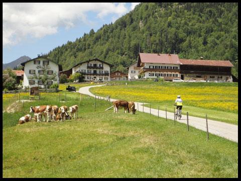 Idyllisch: Auffahrt in den Jachenauer  Ortsteil Berg.
