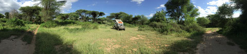 Lake Manyara National Park und Camp in der Wildnis.