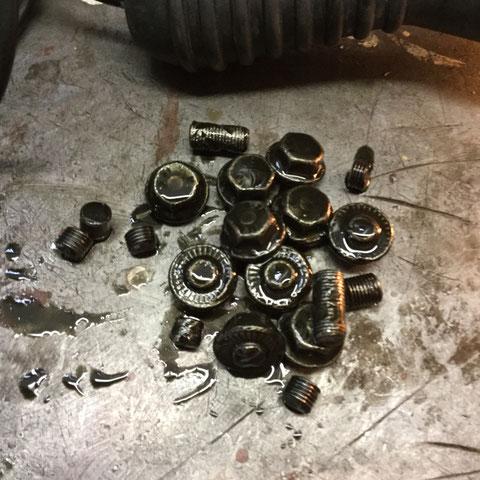 Diese 10 Schrauben lagen im Boden des Differentialgehäuses.