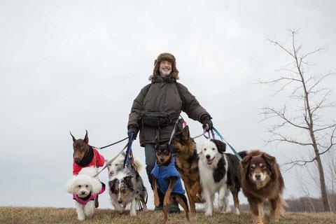 Pour changer de vie, Paul Sneijder change de job: il devient promeneur de chiens (©SND Distribution).
