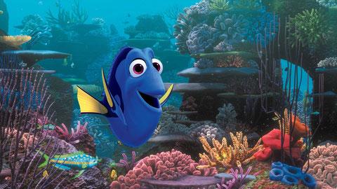Dory a peu de mémoire mais se souvient de ses parents, et va tenter de les retrouver (©Pixar/Walt Disney).
