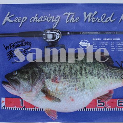 No. 1 Manabu's world record bass Poster