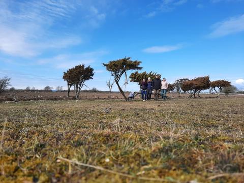 Clara, Sonja, Konrad und Hannah auf ihrer Wanderung zum Långe Jan
