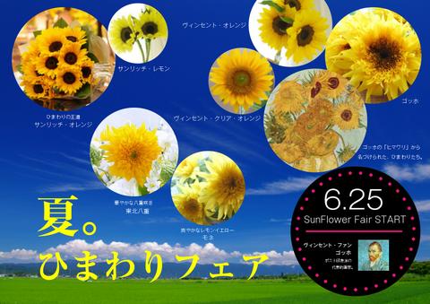 はなひろ 夏 ひまわりフェア 開催 お求めやすい価格にて販売中 プレゼント 花言葉