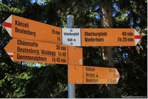 Bei Unterburgfeld haben wir direkten Blick