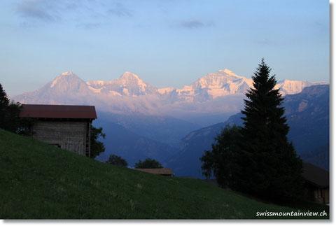 und geniessen ein paar Schritte oberhalb den Blick auf Eiger, Mönch und Jungfrau.