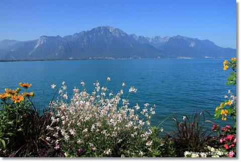Bereits der Kaffee/Gipfeli-Halt in Montreux wird zum Erlebnis mit dieser Aussicht.