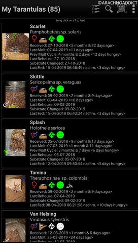 App Tarantulas