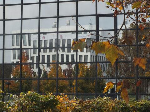 Glasfassade, Wiesbaden