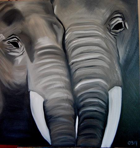 Éléphants gris, huile sur toile 80x80 (vendu)