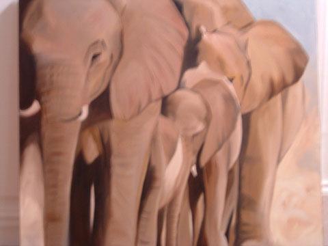 Éléphants, huile sur toile 60x60, 2006 (vendu)